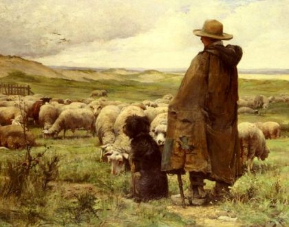 "A New ""Shepherding Program"""